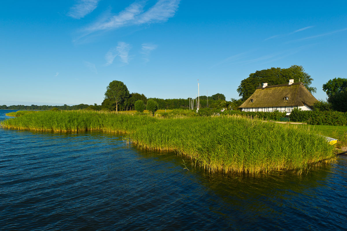 Traditional house at the Schlei right at the riverbank with reed and water in the foreground